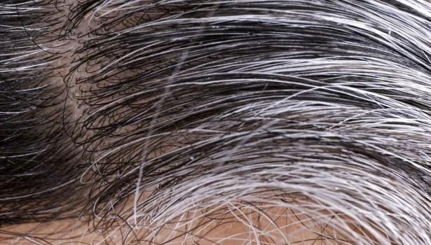 Henna Na Siwe Włosy Fryzury A Może Farby Co Będzie